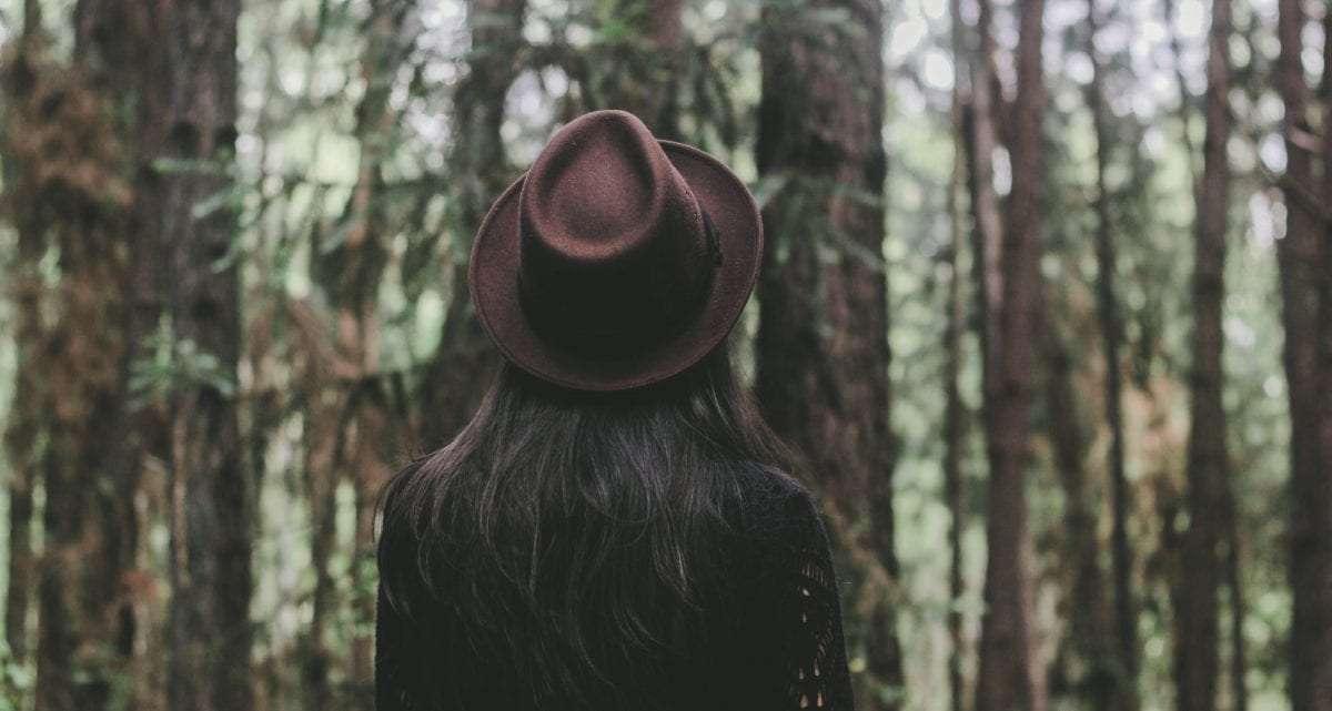 Goed voor je gezondheid: dichtbij het bos wonen!